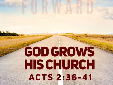 God Grows His Church