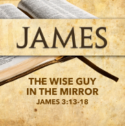 The Wise Guy in the Mirror