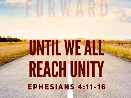 Until We All Reach Unity