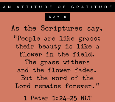 Thankful for God's Enduring Word