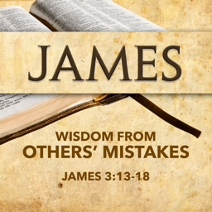 Wisdom from Others' Mistakes