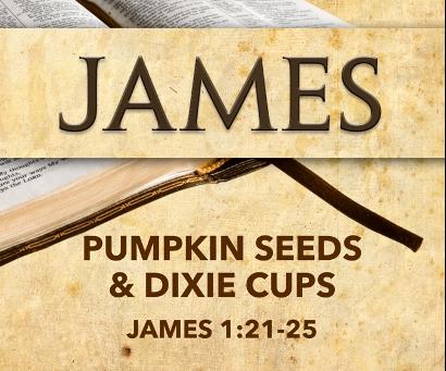 Pumpkin Seeds & Dixie Cups