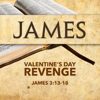 Valentines Day Revenge