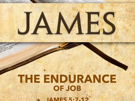 The Endurance of Job