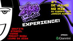 Zica experience (1).png