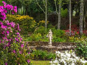 Hogsback Open Gardens & Spring Celebration