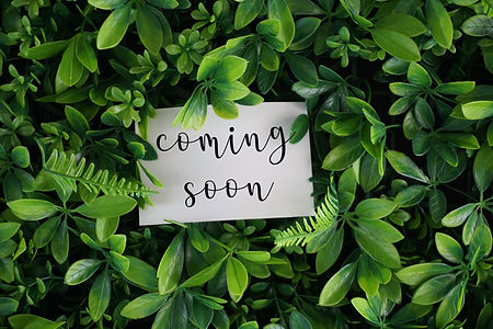 Coming soon wording on a white card over