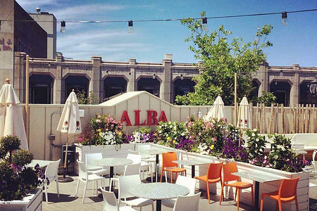 Alba_20Quincy.0.jpg