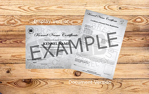Certificate Example.png