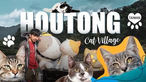 หมู่บ้านหูต่ง ดงแมวเหมียว Houtong Cat Village
