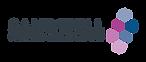 Sandwell_Ambassadors_Full_Logo_CMYK.PNG