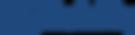 Net-Visibility-logo-no-tag-line-blue.png