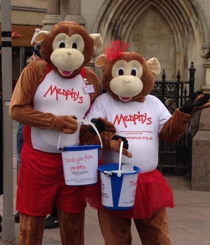 Menphys Monkeys
