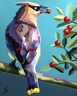 Cedar Waxwing by Steve Danner