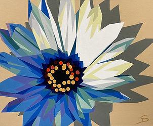 Daisy by Steve Danner