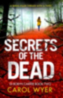 Secrets Final cover, by Carol Wyer.