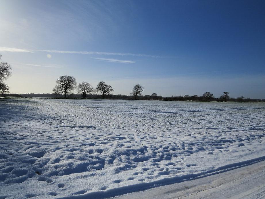 Perfect winter's day, Barbara Copperthwaite, Go Be Wild