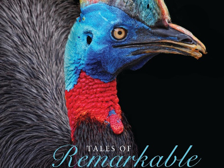 Review: TALES OF REMARKABLE BIRDS, Dominic Couzens