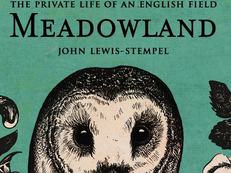 Review: MEADOWLAND, by John Lewis-Stempel