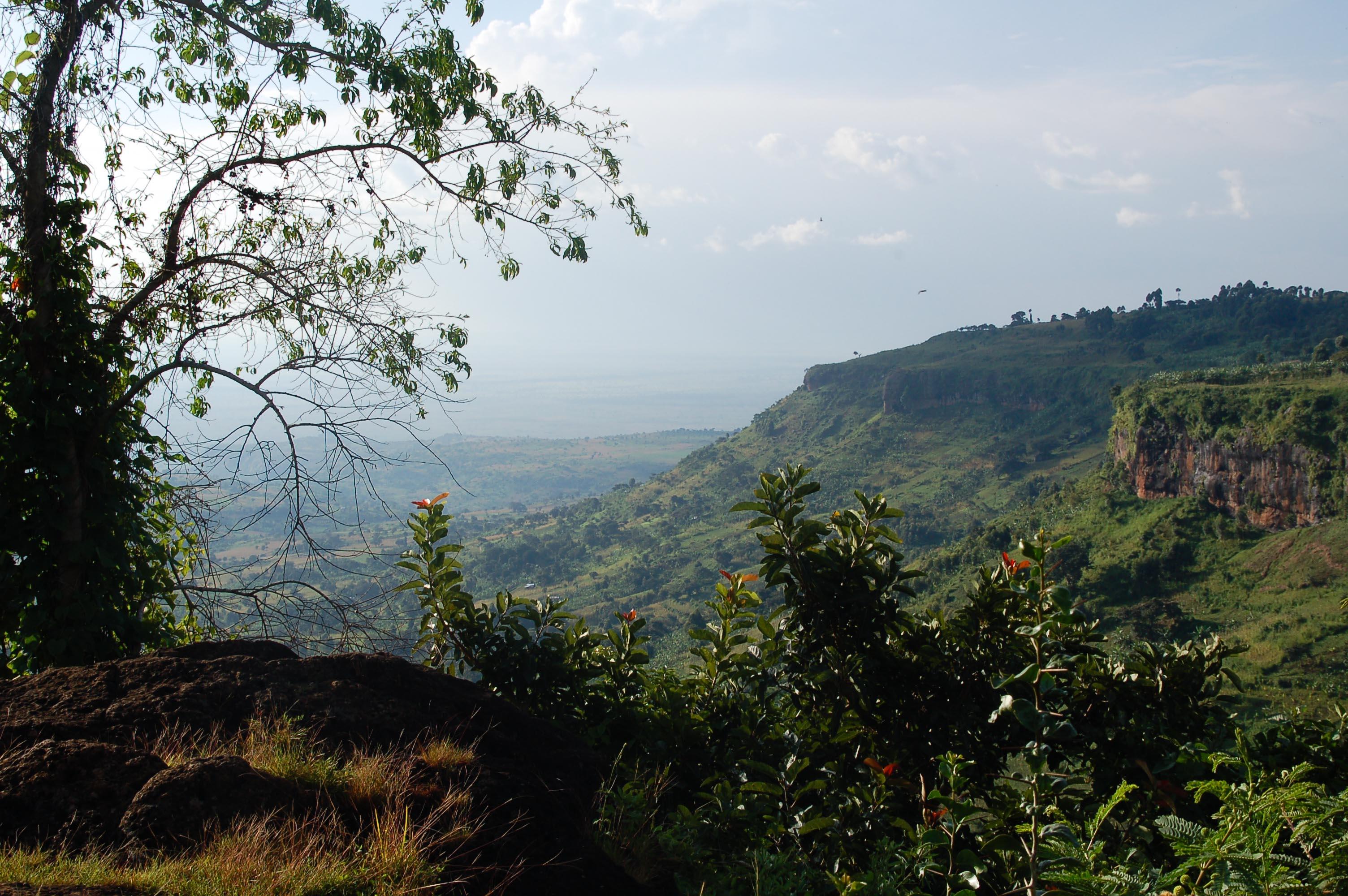 Mt. Elgon Blick ins Tal