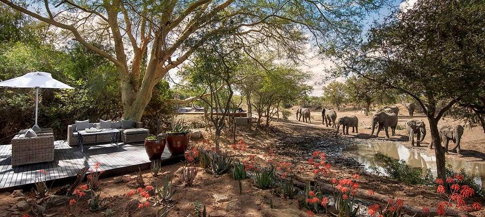 Ngala-Safari-Lodge-South-Africa-3_1.jpg