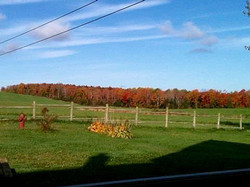 shubie farmhouse view