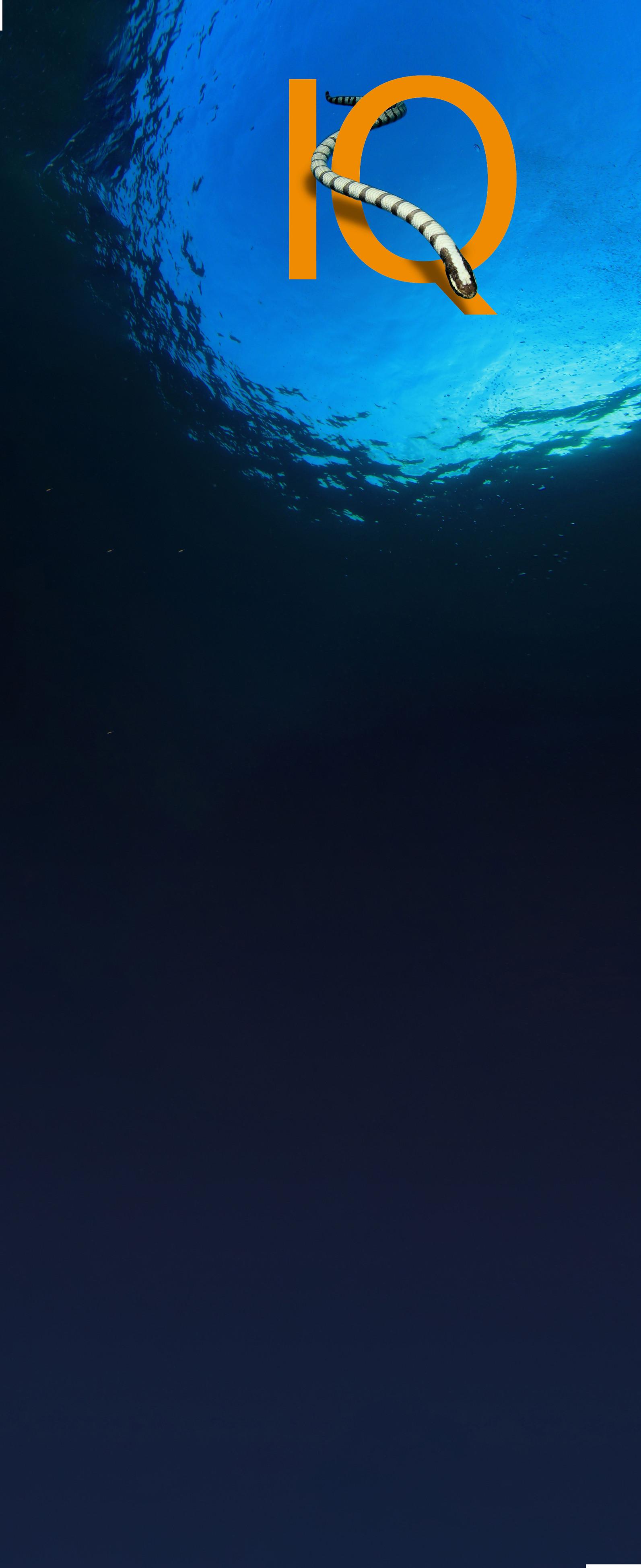OCEAN-_IQ-Resources-exLONG-SMALL.jpg