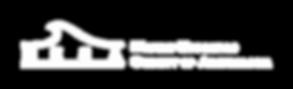 logo_mesawhite.png