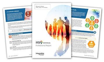 iEQ9-report2.jpg