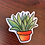 Thumbnail: Potted Plant Super Fun Vinyl Sticker Set