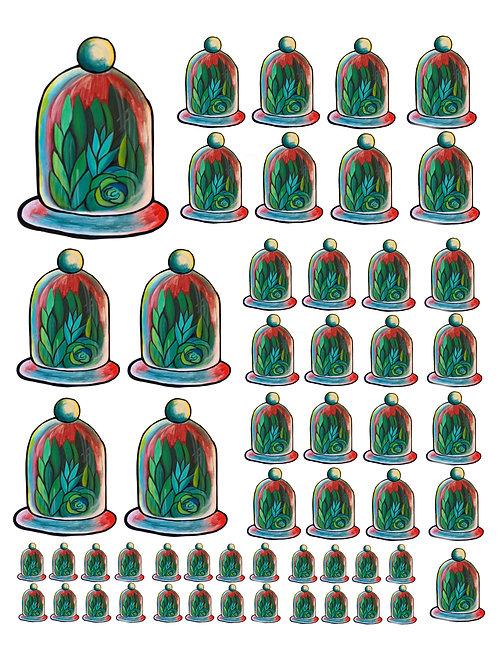 Succulents Under Glass Super Fun Vinyl Sticker Set