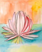 Lily Pad Bloom