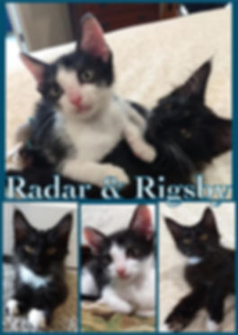 radar and rigsby.jpg