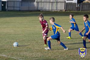 Dapto Phoenix Football Club