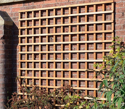 Square Trellis Golden Brown