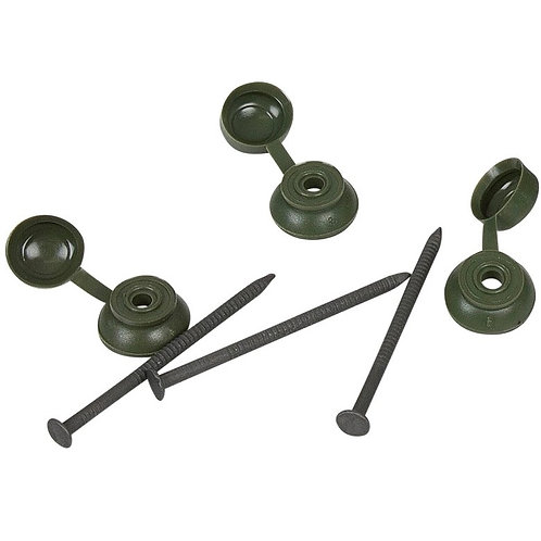Coroline Green Fixing Nail - Pack of 20