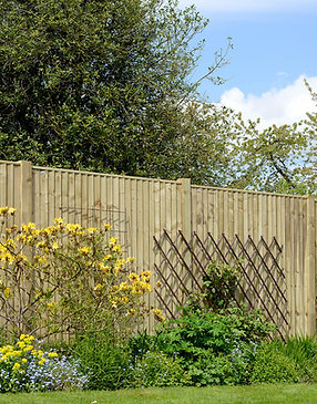 Weston Featheredge Treated Green Fence Panels