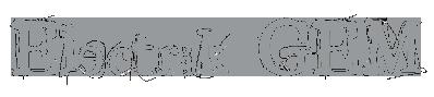 logo-E-Gem-gris.png