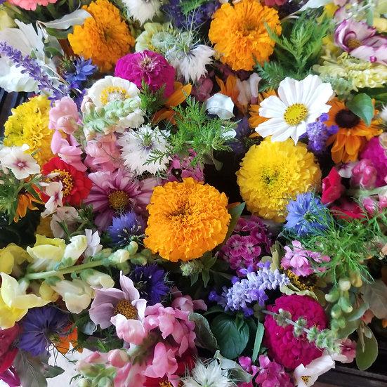 All season Flowers