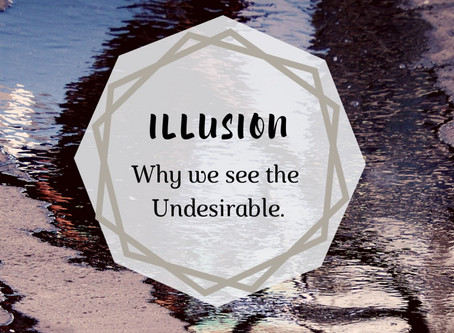 Illusionary Reality: Why we see the undesirable