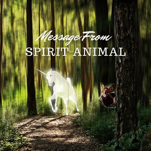Spirit Animal Message