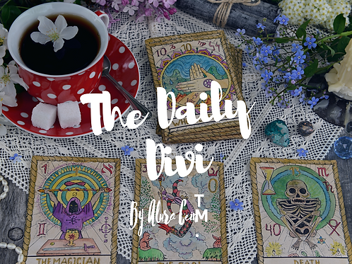 The Daily Divi