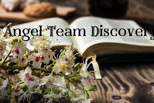 Angel Team Discovery