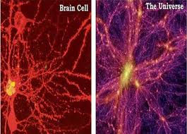 universe,looks,like,brain,cells,akasha,consciousness,alura,cein