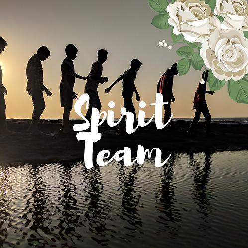 Spirit Team Insight