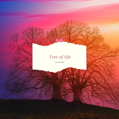 Tree of life Mentoring