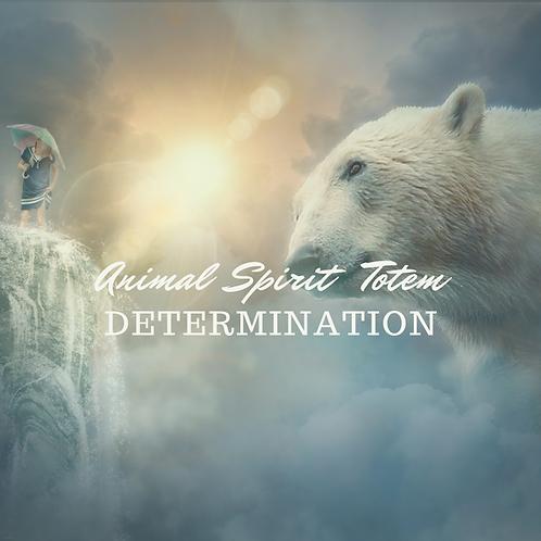Animal Totem Spirit Determination