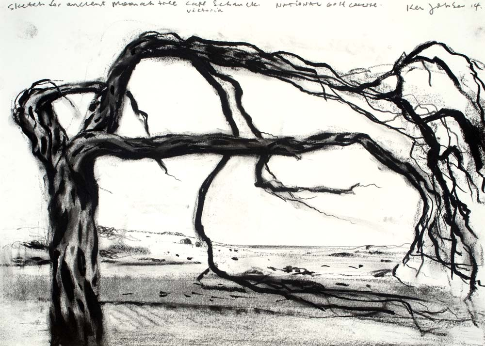 SKETCH FOR ANCIENT MOONAH TREE