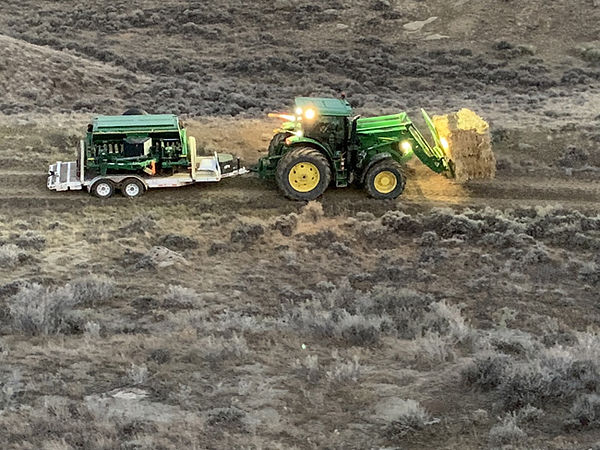 seed-bed-services.jpg
