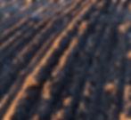 inter-seeding-services.jpg